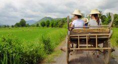Adventure Tour in Nakhon Nayok Full Day Tour from Bangkok