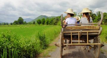 Adventure Tour in Nakhon Nayok Full Day Tour from Bangkok