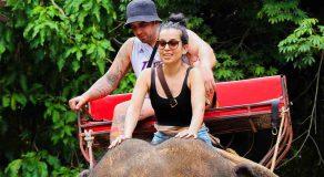 Khao Yai Tour from Bangkok Trip to Khaoyai National Park