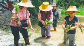 Thai Touch Tour Nakhon Nayok Ox Cart Riding Trip