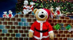 Teddy Bear Museum Pattaya Tour