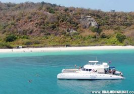 Best island trip Pattaya 3 Islands Serenity Yachting, leave from Ocean Marina Yacht Club for fishing,snorkeling, feeding monkeys,tour booking discount price