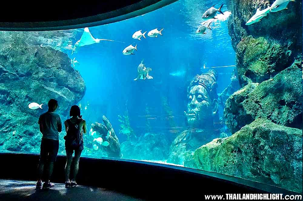Offer to Sea Life Bangkok Ocean World Ticket Discount,Bangkok Thailand.enjoy to see a lot animals in large aquaruims at Siam Paragon, best booking online